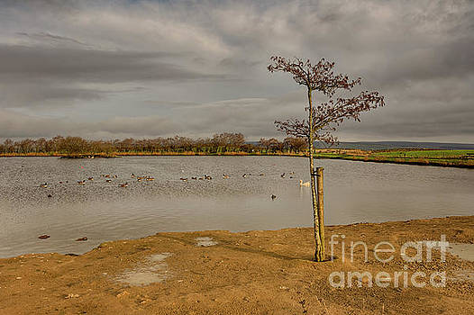 Redcar Tarn in Keighley by Mariusz Talarek