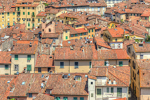 Lucca - Italy by Joana Kruse