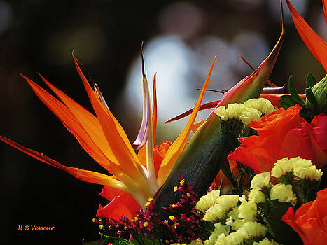 A Beautiful Bouquet   by B Vesseur
