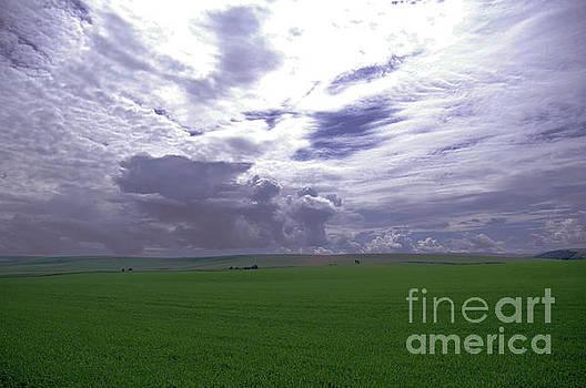 A beautiful sky by Jeff Swan