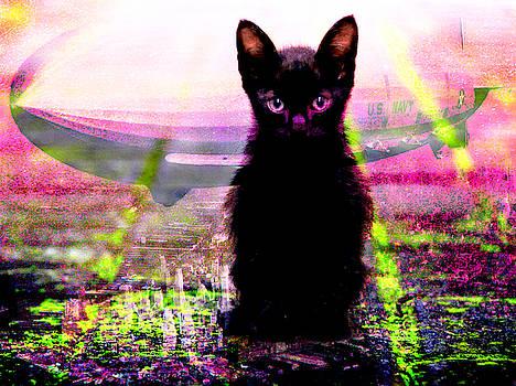 A Black Kitten is Good Luck Number 7 by Ben Stein