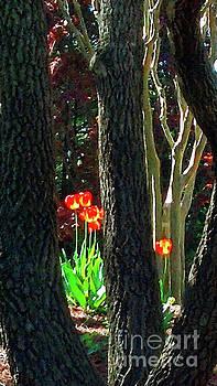 Sharon Williams Eng - A Bright Spot in the Garden