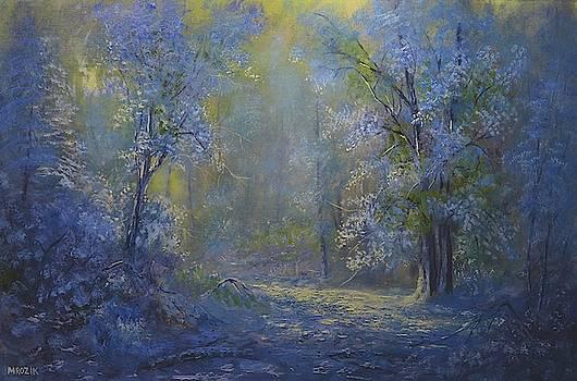 A Dream by Michael Mrozik