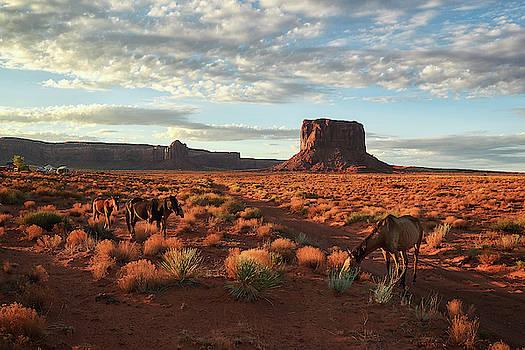 A genuine Wild West by Marek Ondracek