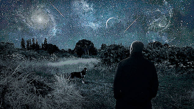 A German Shepard Dog And His Owner Observe The Night Sky In Cheshire England by Suzanne Powers