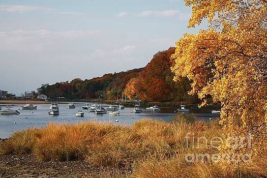 A Golden Autumn at Oyster Bay by Dora Sofia Caputo Photographic Design and Fine Art