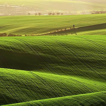 A land of green by Marek Ondracek