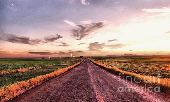 A long striaght lease road  by Jeff Swan