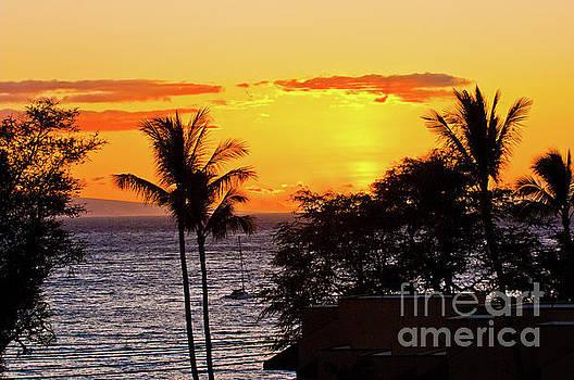 A Maui sunset, Hawaii by Micah May