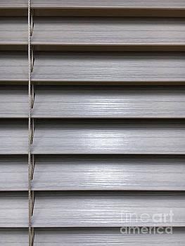 A modern blind by Tom Gowanlock