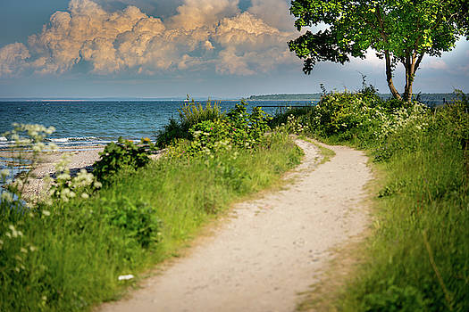 A Narrow Path Leads To The Beach From The Sea by Karsten Eggert