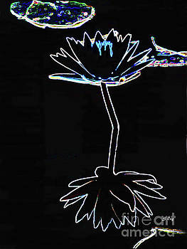 Sharon Williams Eng - A Perfect Flower Drawing 300