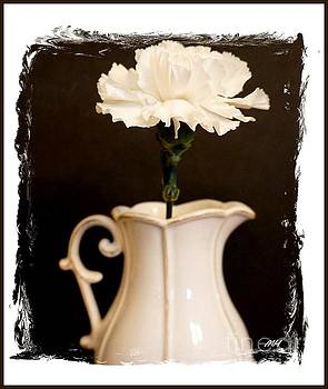 A Picture of a Flower in a Pitcher by Marsha Heiken