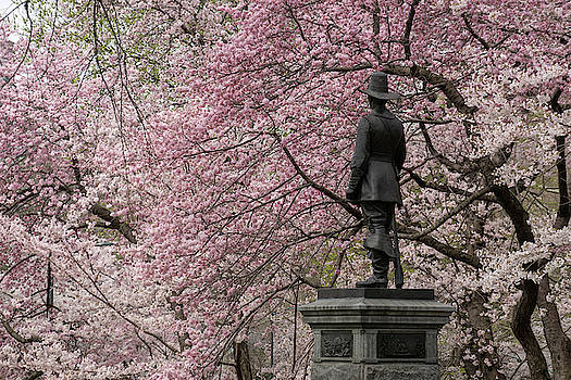 A Pilgrim in Pink by Cornelis Verwaal