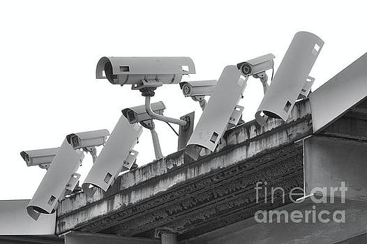 A Row of Security Cameras by Yali Shi