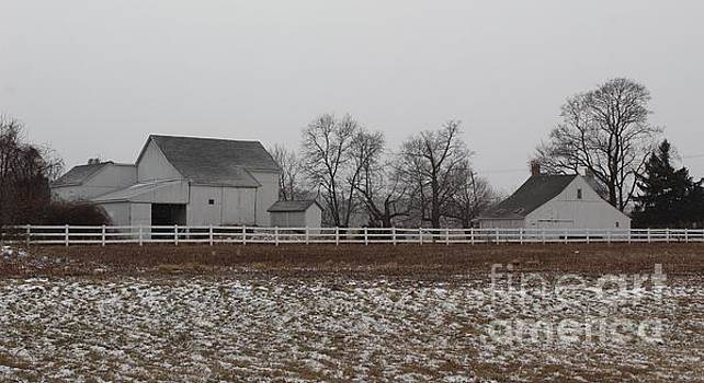 A Snowy View of Leedom Farm by Anne Ditmars