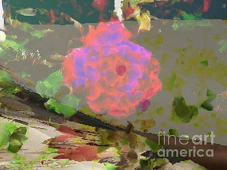 A Splash Of Color Floral by Catherine Lott