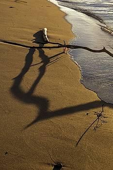 Tom Trimbath - A Strand Stranded