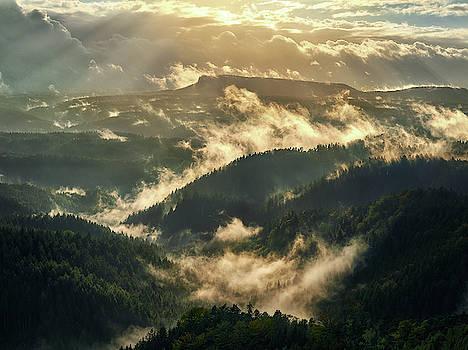 A valley of golden mists by Marek Ondracek