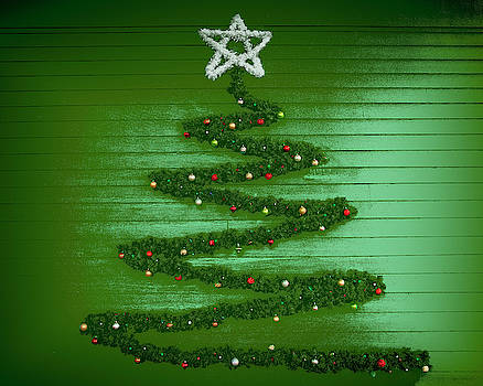 A Wall Full of Christmas Tree by Mitch Spence