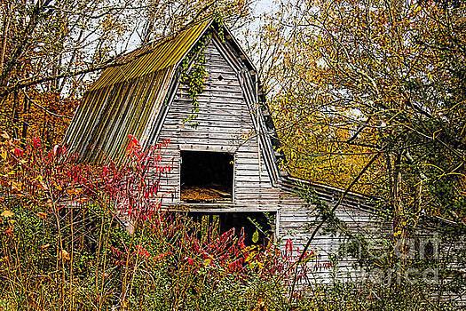 Abandoned Barn # 5 by Geraldine DeBoer