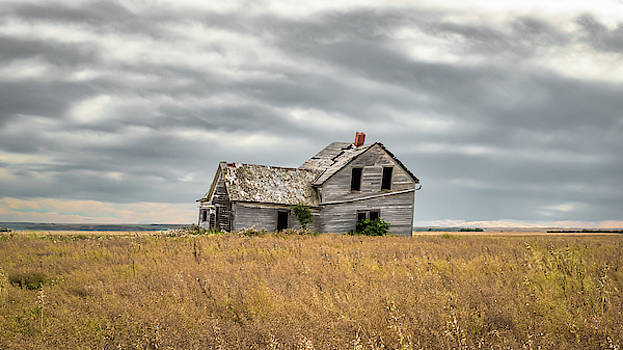 Abandoned by Hamish Mitchell