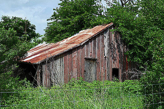 Connie Fox - Abandoned Old Barn in Texas Hill Country