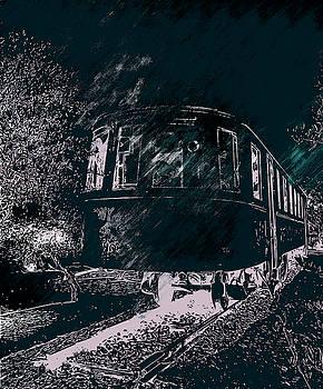 Abandoned Train by Nicholas V K