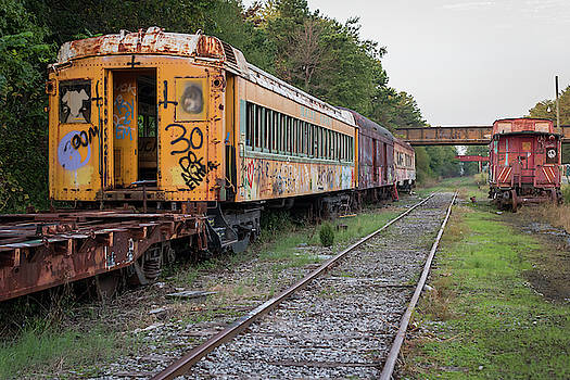 Abandoned Trains by Terry DeLuco