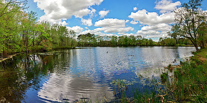 Abbott's Mill Pond Panorama by Brian Wallace