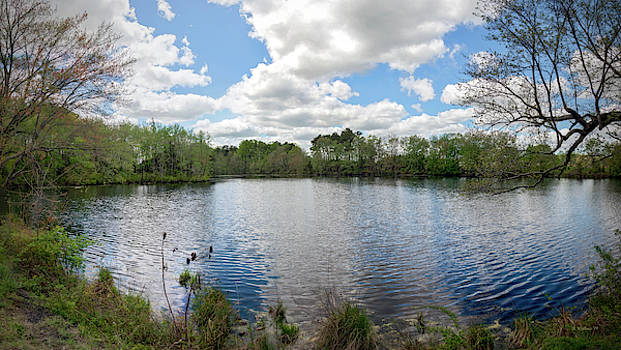 Abbott's Mill Pond Panoramic by Brian Wallace