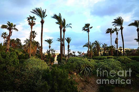Abrasha Park Tel Aviv 3 by Del Art