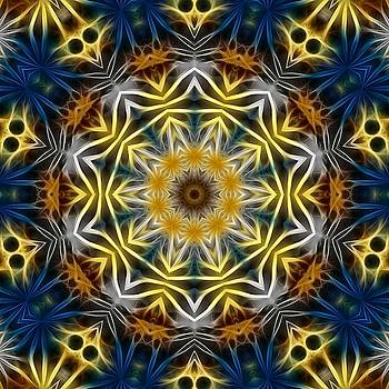 Abstract Daisies Kaleidoscope by Cindy Boyd