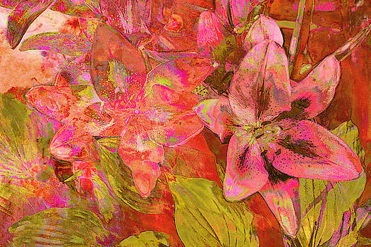 Abstract Pink Lilies by Suzanne Powers
