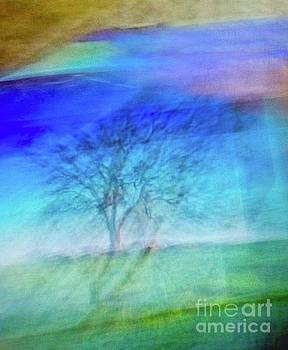 Abstract Tree by Glennis Siverson