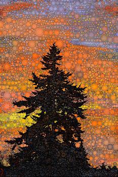 Acadian Sunrise by Daniel McPheeters
