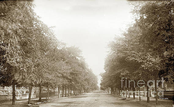 California Views Mr Pat Hathaway Archives - Adeline Street, Oakland, Circa 1887