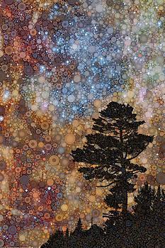 Adirondack Night by Daniel McPheeters