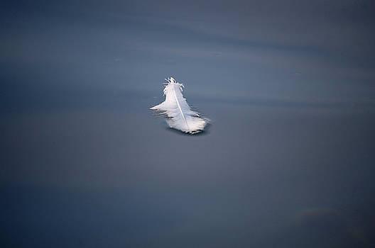 Tom Trimbath - Adrift