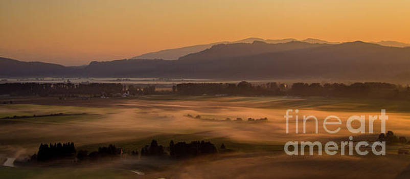 Aerial Skagit Photography Morning In the Fields by Mike Reid