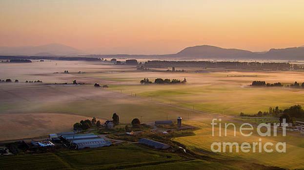 Aerial Skagit Photography Sunrise Mist by Mike Reid