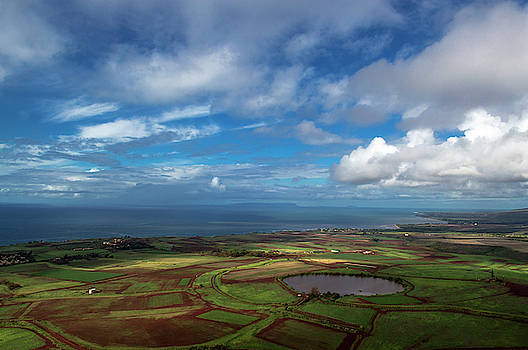 Aerial View of the Garden Island of Hawaii by Alina Oswald