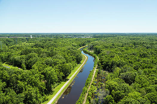 Aerial View Of Vegetation On Landscape by Panoramic Images