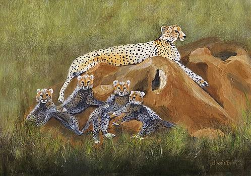 African Cheetah Family by Jamie Frier