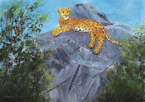 African Leopard by Jamie Frier