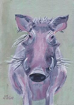 African Warthog by Jamie Frier