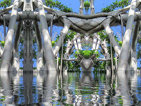 After the Flood Banyan 1 by Dan Simpson