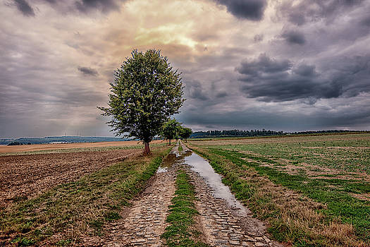 After The Rain by Rabiri Us