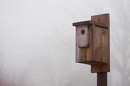 Erin Thomas - Aggie Birdhouse
