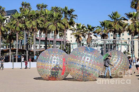 Diann Fisher - Airball L A Santa Monica Beach Park